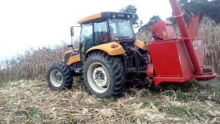 Video Valtra A950 e Jumil Jm370 na colheita d milho MP3, 3GP, MP4, WEBM, AVI, FLV Januari 2019