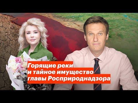 Про имущество одного из членов Правительства РФ