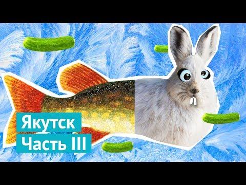 Якутск: букет из щук, носорог Саша и опасный квартал (видео)