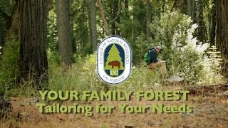 Your Family Forest