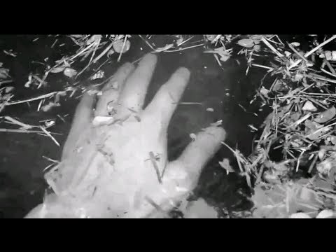 Dark Ambient Music - DigitalSimplyWorld - Amnesia