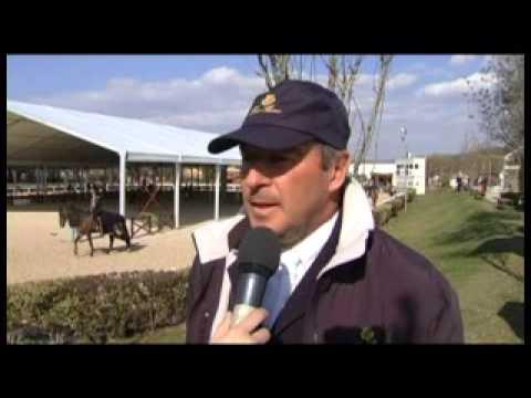- Cavalli d'Italia