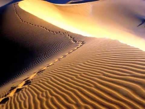 Арабска красива музика и танци