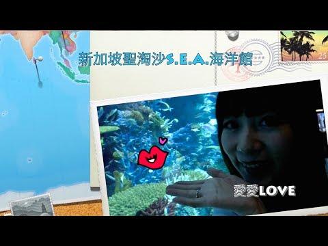 新加坡S. E. A. 海洋館 ❤