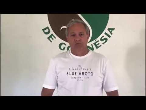 Levantamento de Custos - Heveicultura  em Goianésia (GO)