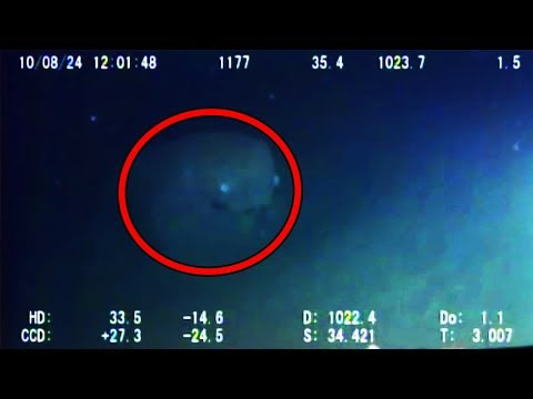 12 Mysterious Underwater Creatures Caught On Tape