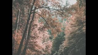 A little peek from the next album that's coming out soon.https://kuplasound.bandcamp.com/track/still-breathingKUPLA:https://www.facebook.com/kuplasoundhttps://twitter.com/KuplaSoundhttps://soundcloud.com/kuplasound