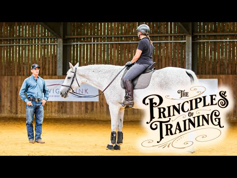 """The Principles of Training Season 3 Episode 10: """"The Mental Aspects of the Flying Lead Change"""""""