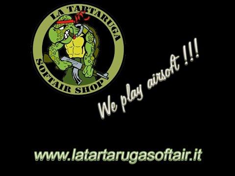 Tartaruga sì… ma più veloce della luce!