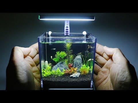 The World's Smallest Plant Aquarium - Thời lượng: 18:42.