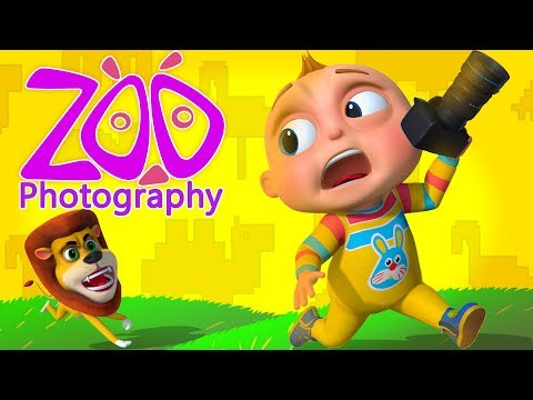 TooToo Boy - Zoo Photography Episode | Funny Comedy Show For Kids | Cartoon Animation For Babies