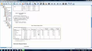 How To Use SPSS-Factorial ANOVA