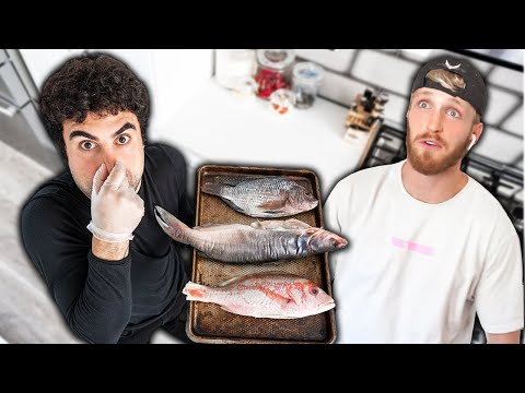 I Hid Smelly Fish In Logan's House.