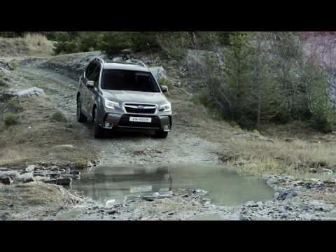 The new Subaru Forester - Take on any terrain