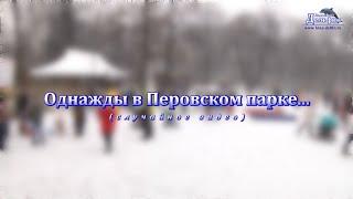 ВИДЕО: Однажды в Перовском парке...
