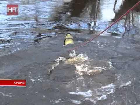 В Новгородском районе найдено тело ребенка, пропавшего десять дней назад
