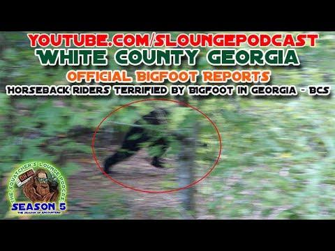 Bigfoot on the Appalachian Trail - SLP523
