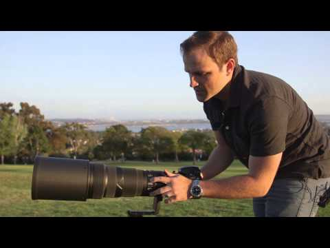 Review of Nikon 500mm f4 Lens - AKA THE BEAST