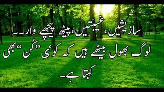 Best Urdu Quotes Collection - Golden words urdu - achi achi baatein - achi baatein urdu