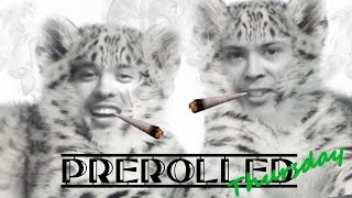 PreRolled Thursday: Snow Leopard by Green Junky Farms by Take a Break with Aaron & Mo