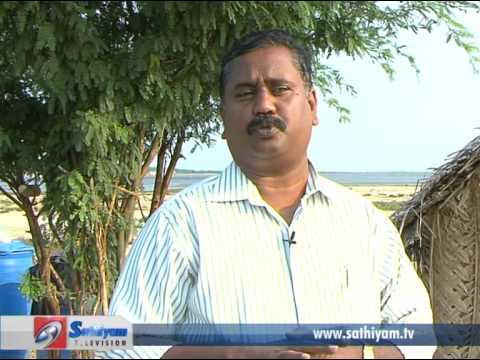 Pasumai Neram – Nandu Valarpu (crab rearing)