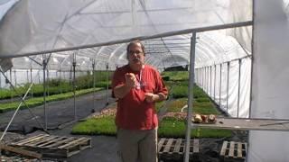 #106 Die neuen Apfelsorten von Lubera