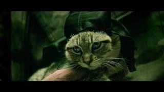 Nonton KEANU 2016 AUDIO LATINO XVID WEB DL bufalolocc Film Subtitle Indonesia Streaming Movie Download