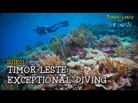 Best Scuba Diving Destination You've Never Heard Of [4K]   Timor-Leste from Below (S01E01)    SZtv