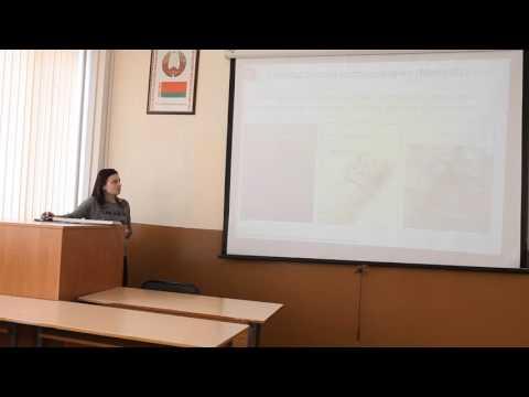 Аналитические обзоры по финансовой стабильности зарубежных стран онлайн видео