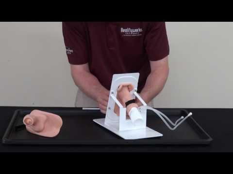 Product Support - Catheterization Trainer on a Stand Assembly