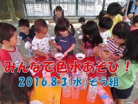 八幡保育園(福井市)ぞう組(2歳児)が色水あそび!2018年8月暑さに負けずに楽しんでます!