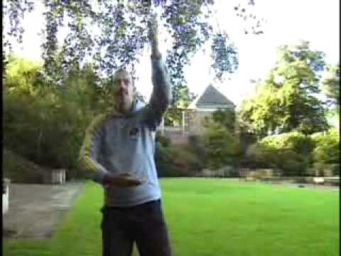 Simple Chi Kung exercises