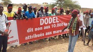 Sénégal : un milliardaire marocain aux prises avec des paysans.