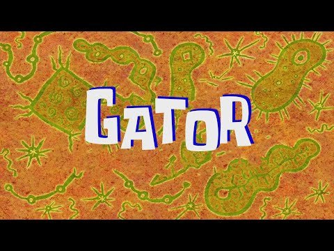 SpongeBob Music: Gator