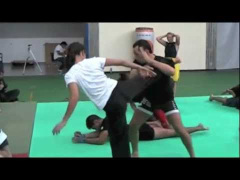 Stage di arti marziali a Gerenzano