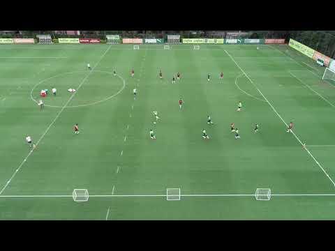 Treinamento - Sociedade Esportiva Palmeiras