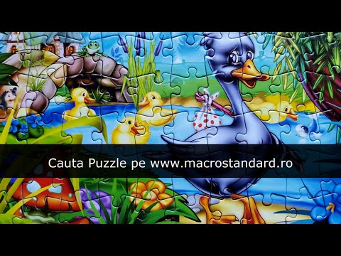 Cauta puzzle Ratusca cea urata pe www.macrostandard.ro