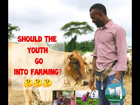 Should the youth go into farming - Episode 1: Introduction