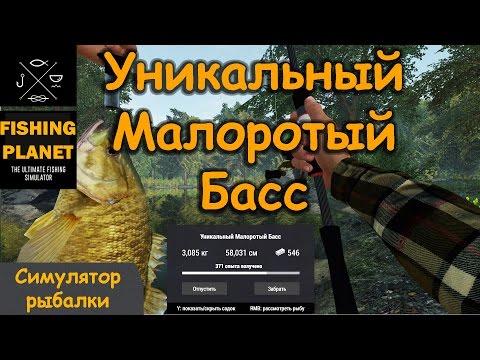 как ловить длинноносого панцирника