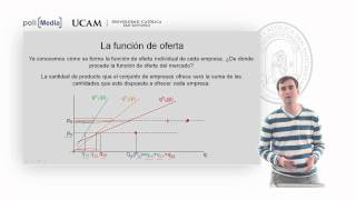 Microeconomía II - La Competencia Perfecta (10) - Alfonso Rosa
