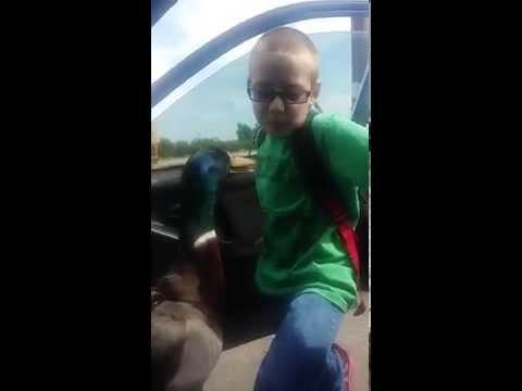un'anatra attende il suo amico dopo la scuola: guardate come si salutano