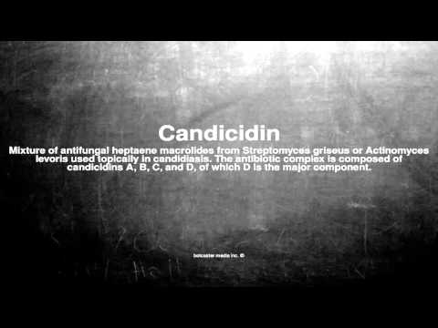 Medical vocabulary: What does Candicidin mean