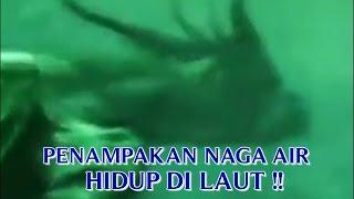 """Video VIDEO PENAMPAKAN """"NAGA ASLI DI DUNIA"""" PENAMPAKAN NAGA AIR YANG MASIH HIDUP DI LAUT !! MP3, 3GP, MP4, WEBM, AVI, FLV Agustus 2018"""
