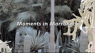 Moments in Marrakech