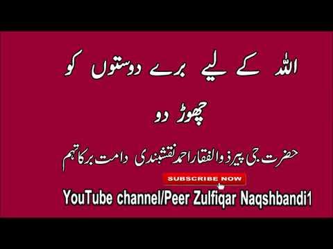 Video Allah ke liye Bura dost chora do Shaykh Zulfiqar Ahmad download in MP3, 3GP, MP4, WEBM, AVI, FLV January 2017