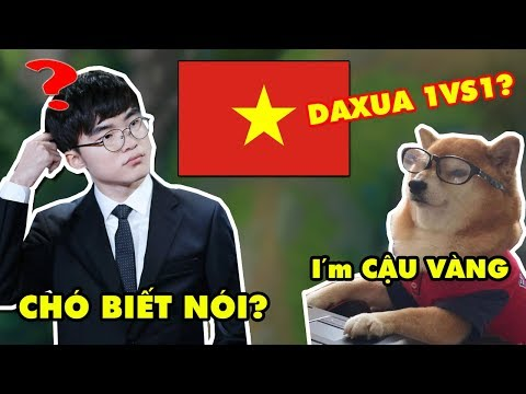 FAKER chạm mặt Cậu Vàng BRCNZE 5 / Bí Kíp Troll Team tại rank Việt Nam, gánh Quỷ Vương tận răng - Thời lượng: 19:50.
