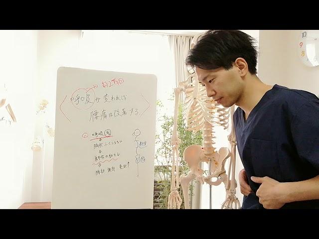 【まさか!?】呼吸が変われば腰痛は改善する!