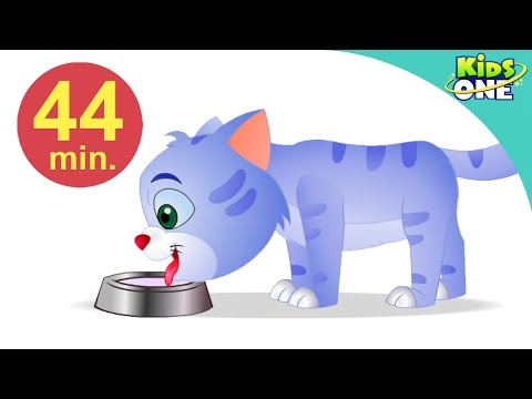 Billi Rani | Aaj Mangalwar Hai | Hindi Children Rhymes | 44 Min Compilation