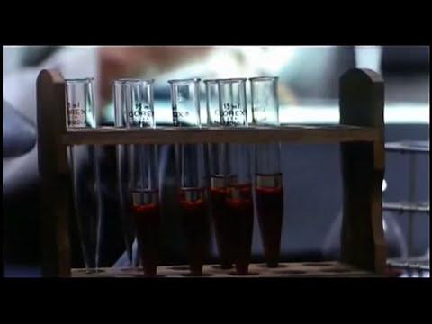 El Día de los Muertos (1985) - Película Completa   En Español