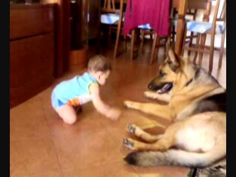 la baby-sitter più sicura del mondo